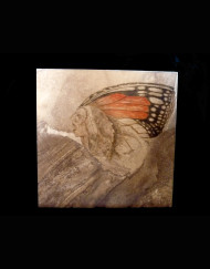 Butterfly Warrior Tile 19 H X 20 W   1200.00