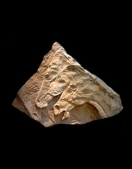Many-Horses-Carving- Sandstone 39X29X2 (2)