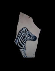 Young Zebra 19 H X 10 W Sandstone   700.00